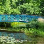 L'étang, parc du Bois-de-Coulonge (Capitale-Nationale, Québec)